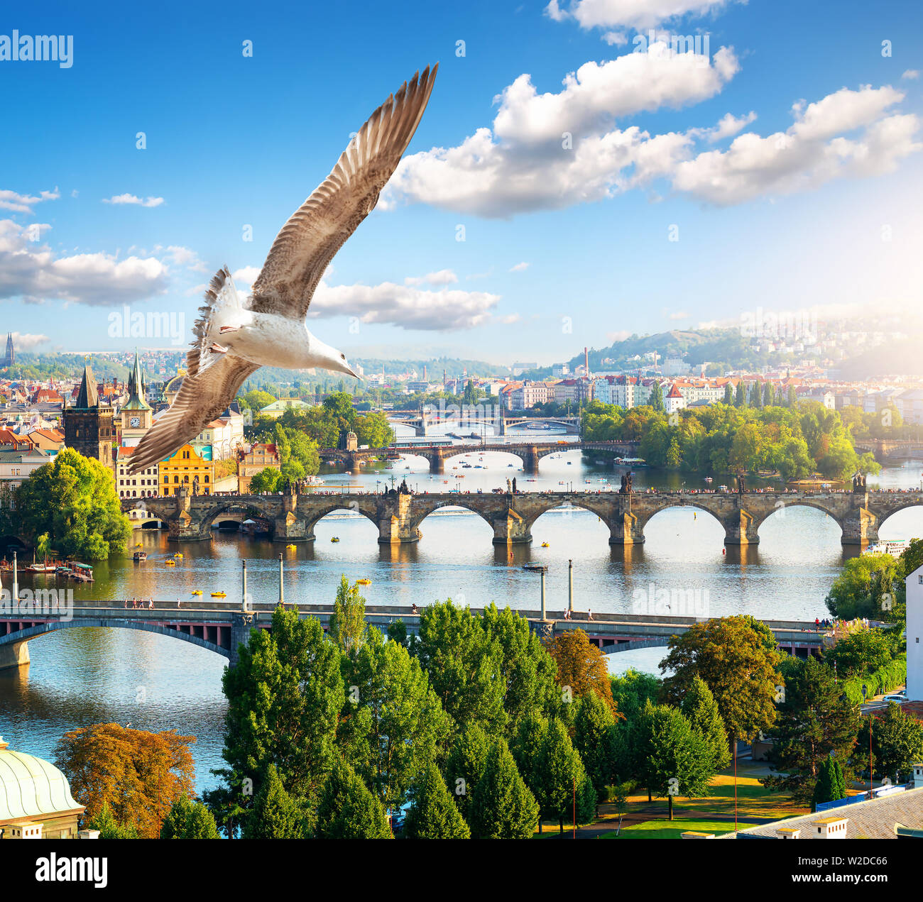 Row of bridges in Prague at summer day - Stock Image