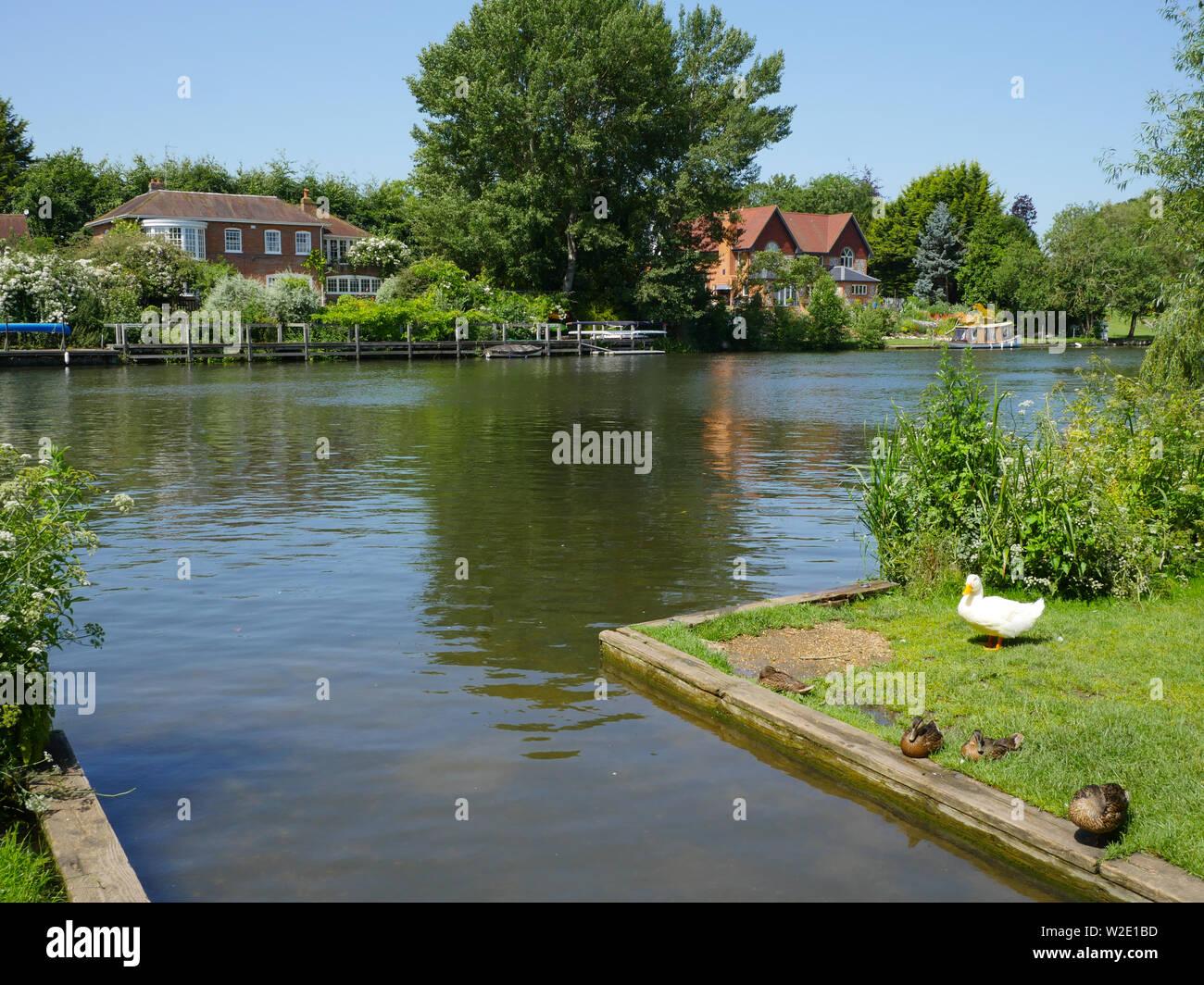 River Thames Landscape, at Ferry Lane, on The Ridgeway Path, South Stoke, Oxfordshire, England, UK, GB. Stock Photo