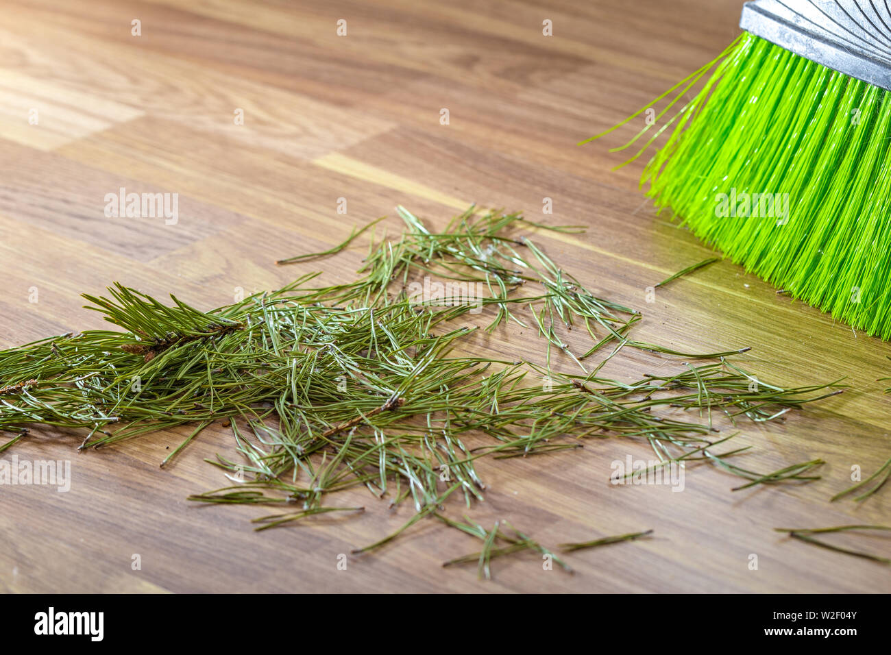 Crumbled needles from the Christmas tree on the floor. - Stock Image