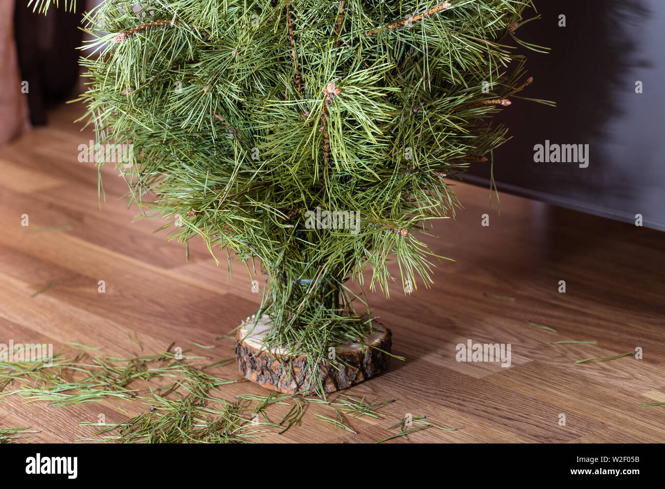 Christmas tree stands on the floor among the garbage of needles. - Stock Image