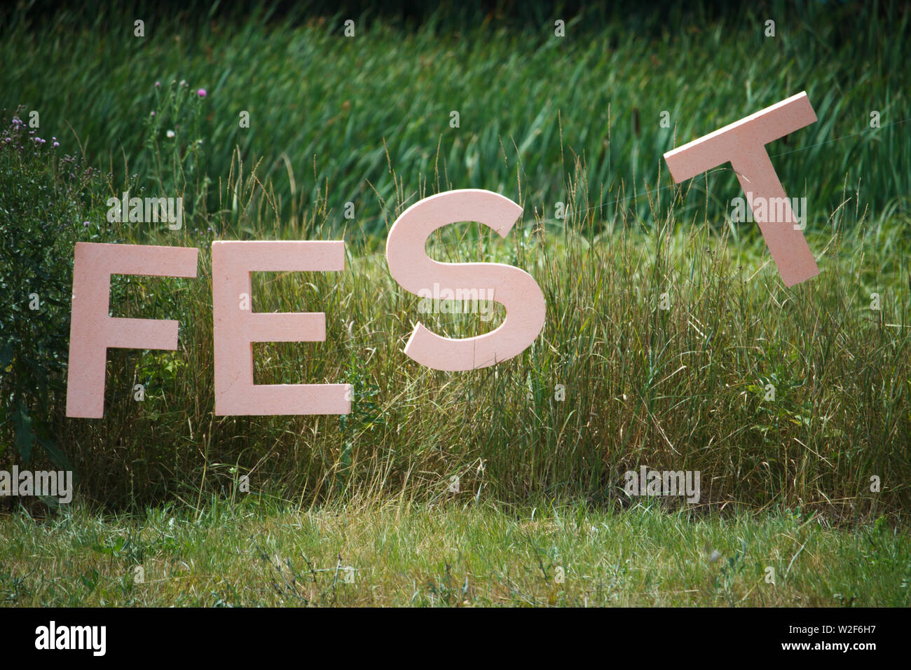 Large letters of the word FEST sign that the festival is held here on the background of thickets of reeds and forest - Stock Image