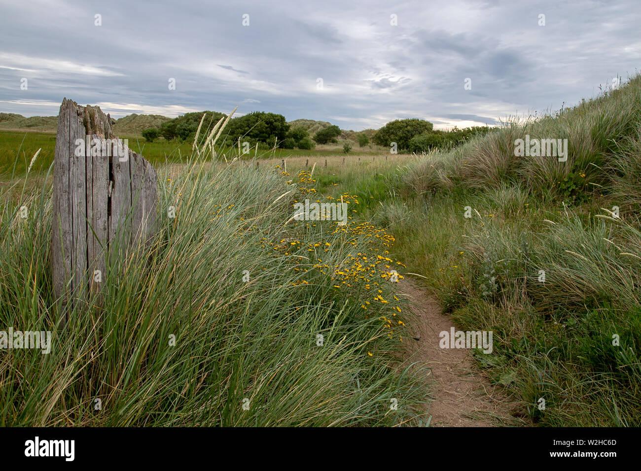 nature walk Stock Photo