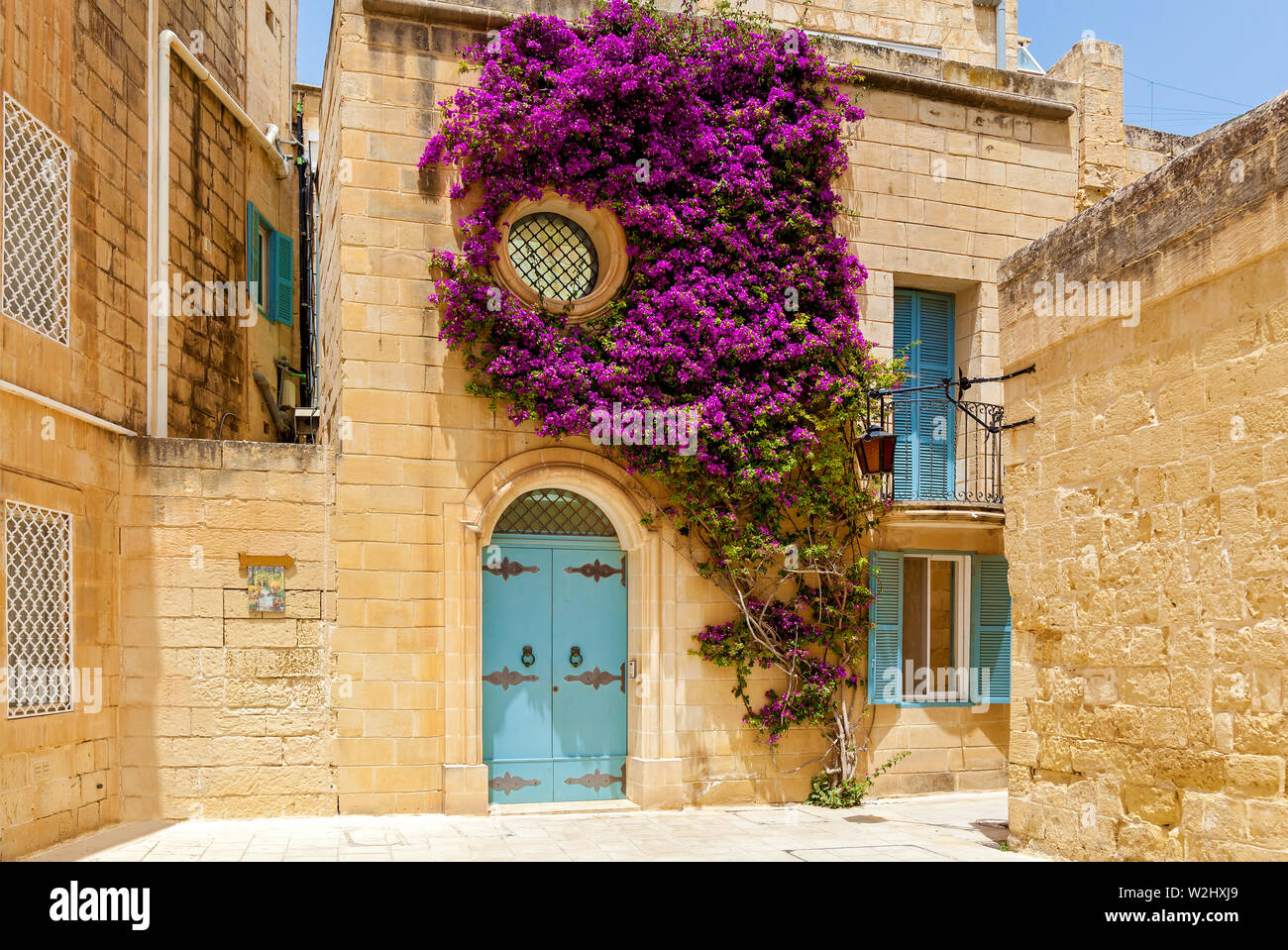 Weaving plants with purple flowers on the facade of a building with a blue wooden door and windows of Mdina, Malta.Sights of the island of Malta - Stock Image