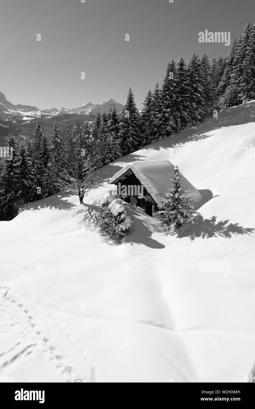 Snowy log cabin with trees and mountains on a perfect winters day in Jungfrau region Swiss Alps - Stock Image
