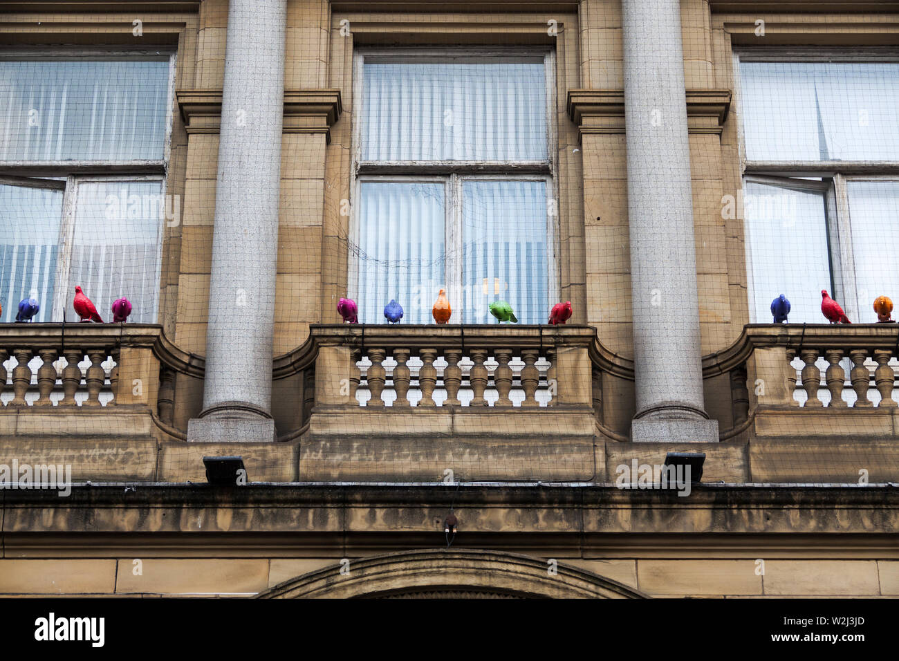 Colouful plastic pigeons on a building designed as a deterrent to stop live pigeons roosting there at night - Stock Image