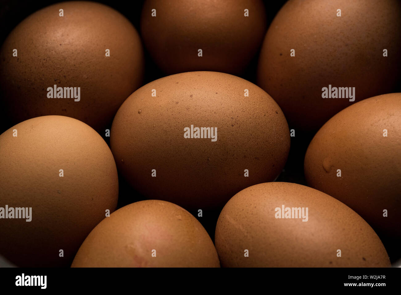 An arrangement of eight brown eggs. - Stock Image