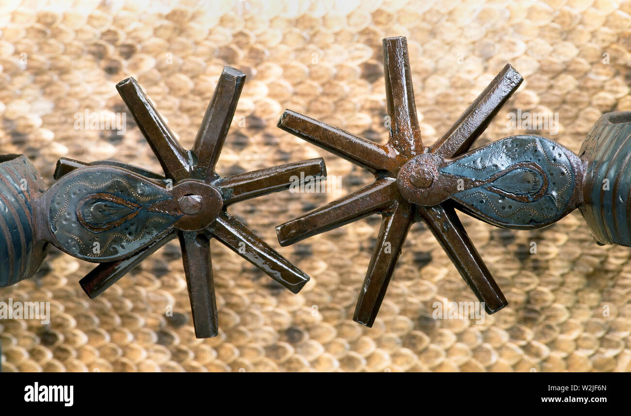Close up of antique Mexican spurs with rattlesnake skin background - Stock Image