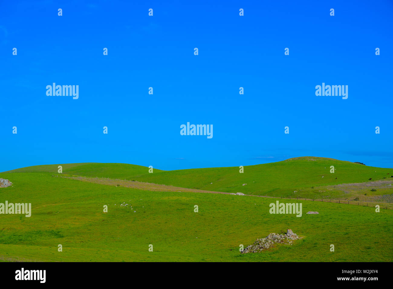 Meadow with beautiful blue sky background with copy space Stock Photo
