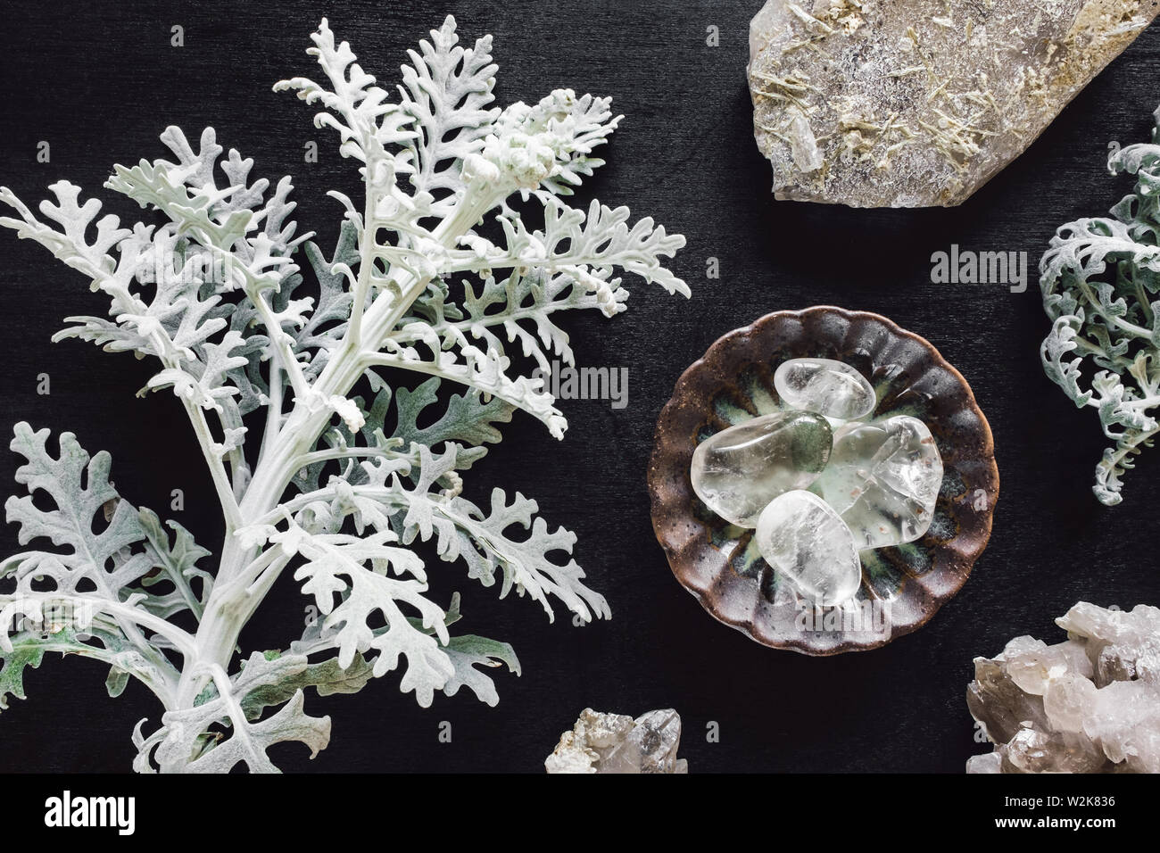 Clear Quartz and Rough Quartz with Dusty Miller on Black Stained Wood Stock Photo