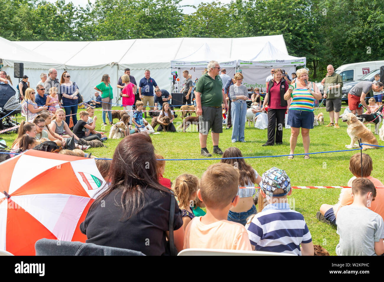 Catch a sausage competition in the dog show at Stockton Heath Festival 2019 Stock Photo