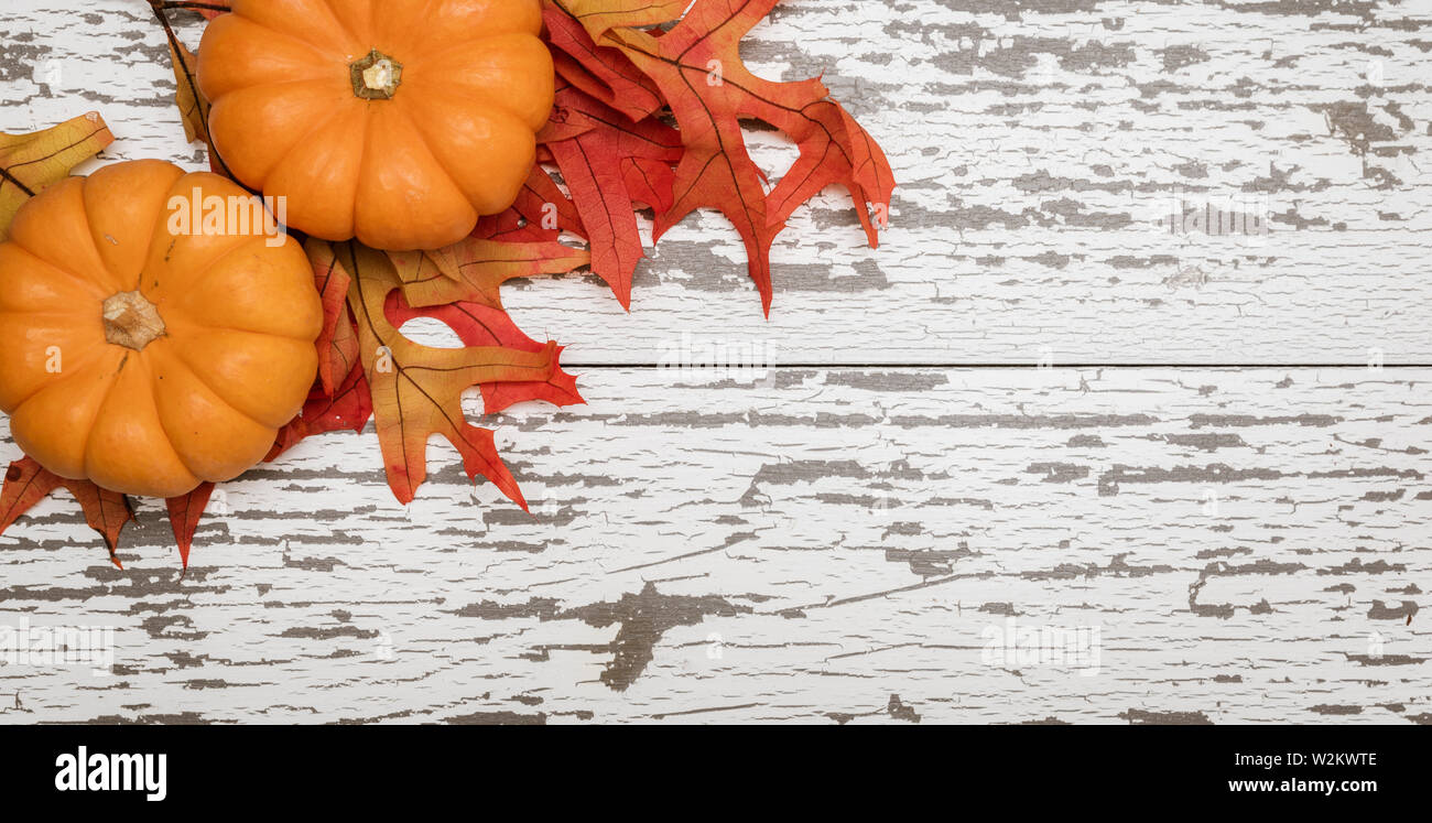 A group of miniature pumpkin and leaves on a wooden slat background Stock Photo
