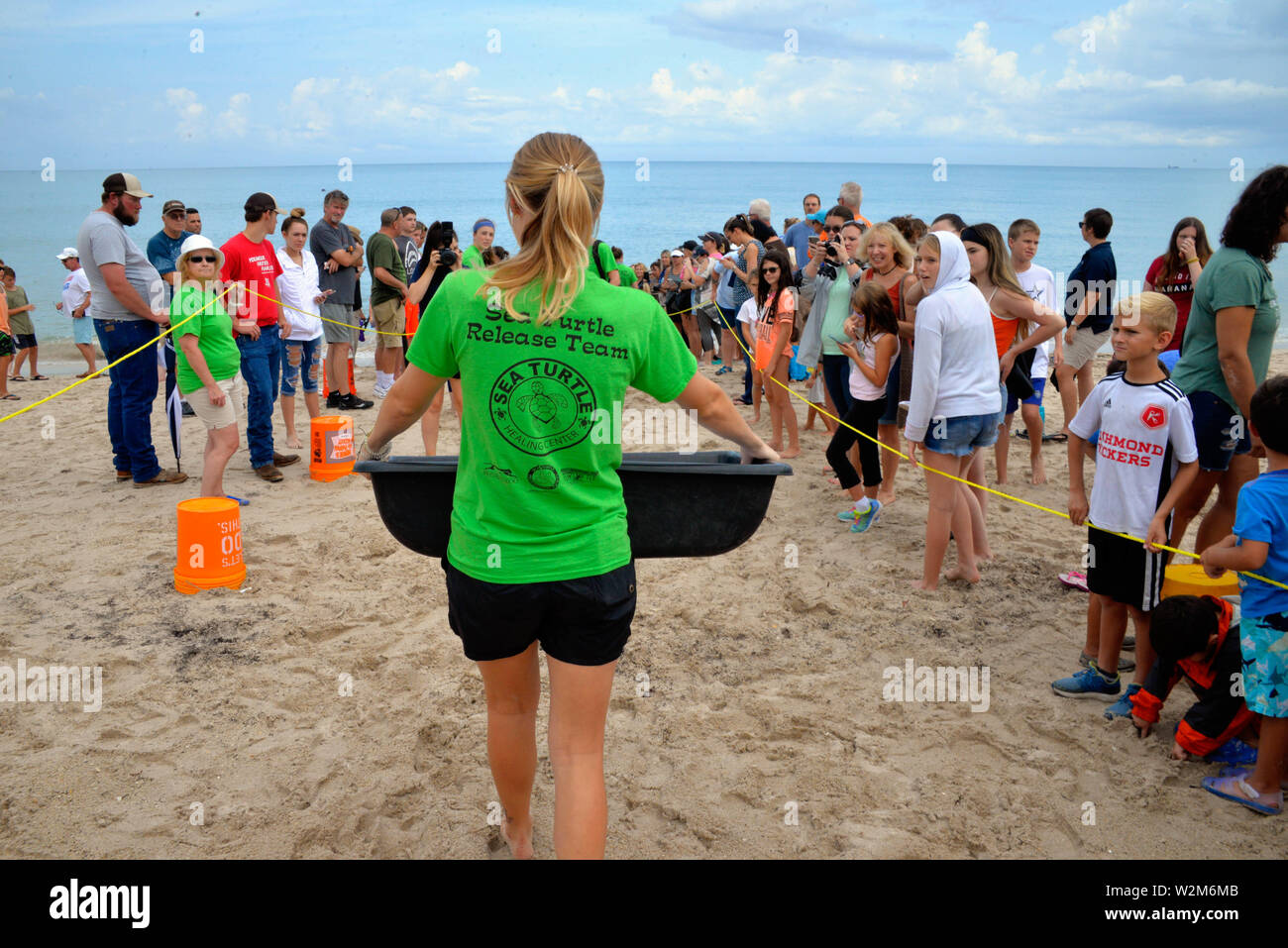 Melbourne Beach, Florida, USA. July 9, 2019.  Following a stay at Brevard Zoo's Sea Turtle Healing Center, juvenile green sea turtle Kona was returned to the Atlantic Ocean through a partnership with the Barrier Island Center. Upon admission to the Healing Center on April 7, Kona appeared lethargic, was covered in barnacles and had trouble staying underwater. This sea turtle was treated with medication, fluids and nutritious food by Zoo staff and volunteers. Credit Julian Leek / Alamy Live News - Stock Image