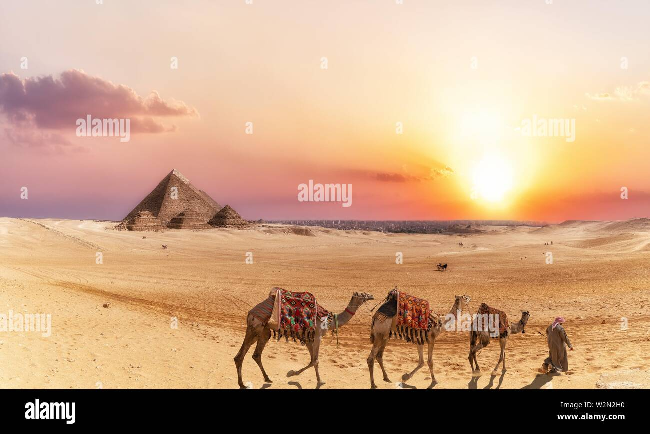 Giza desert scenery with Pyramids and camels at sunset Stock