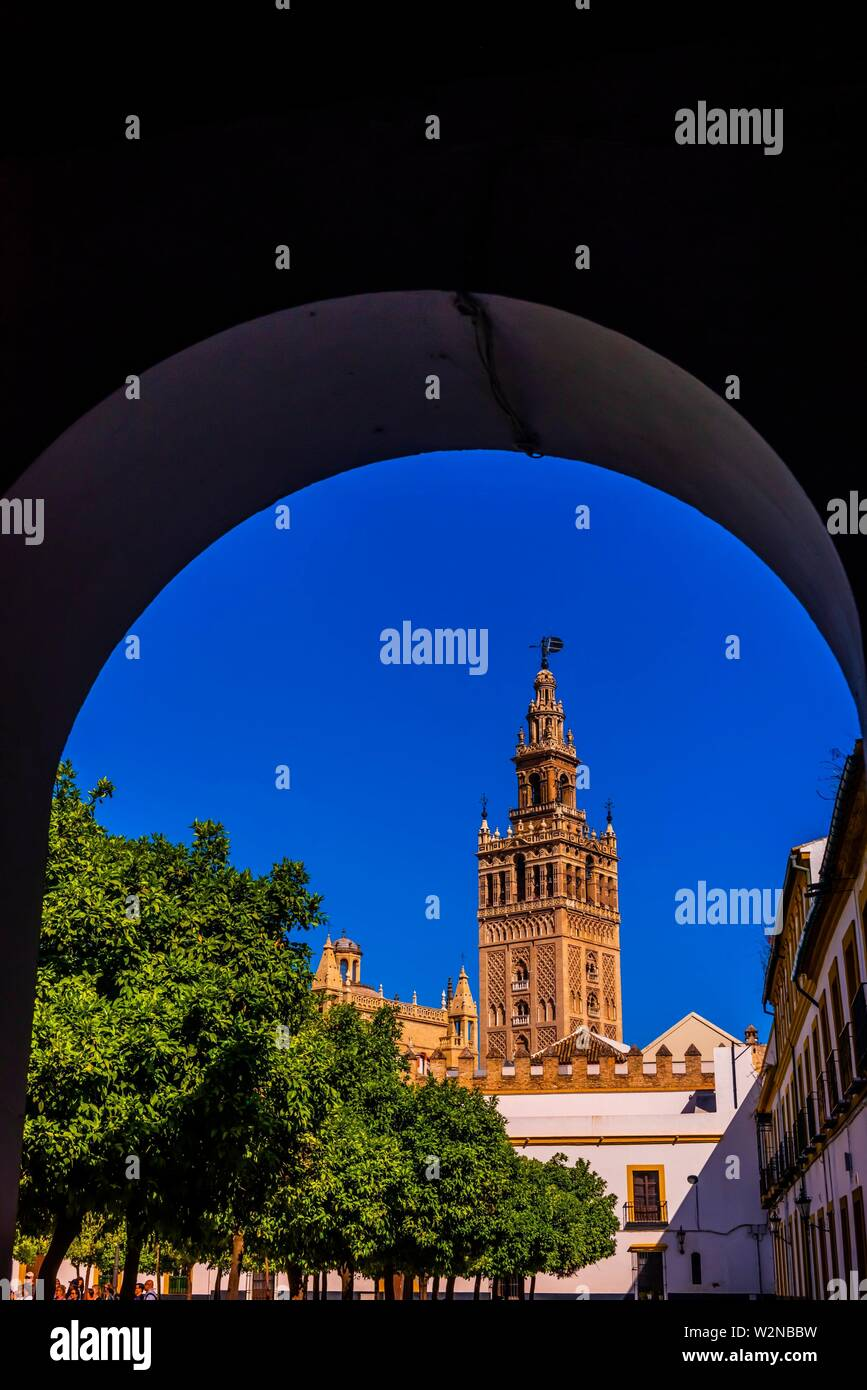 The Giralda Tower, Seville, Andalusia, Spain. - Stock Image