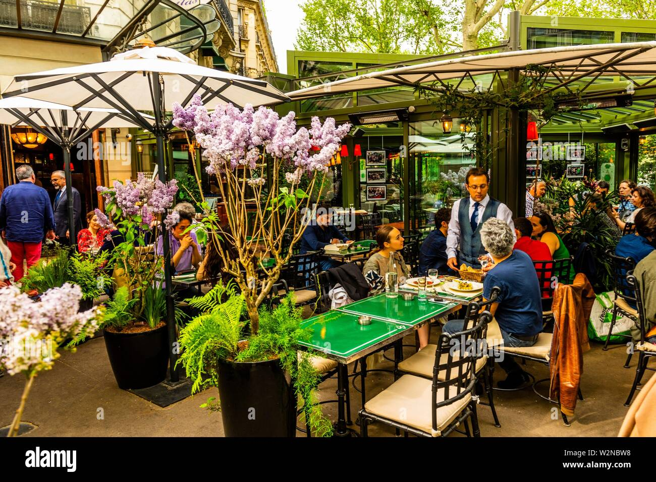 Planter Un Lilas En Pot namesake stock photos & namesake stock images - alamy