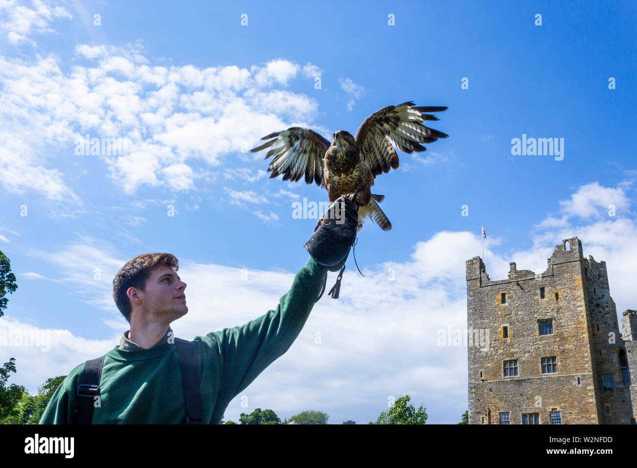 Bolton Castle, Wensleydale, Yorkshire, England. Falconry display.  Mary, Queen of Scots was held prisoner at Bolton for six months in 1568. - Stock Image