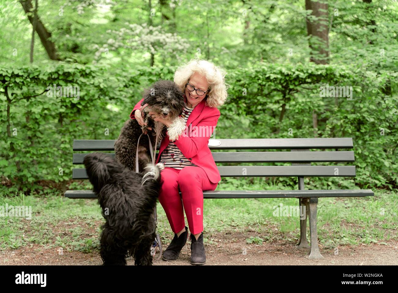 senior woman (67 years old) sitting on bench with two dogs in park, in Nymphenburg, Munich, Germany. - Stock Image
