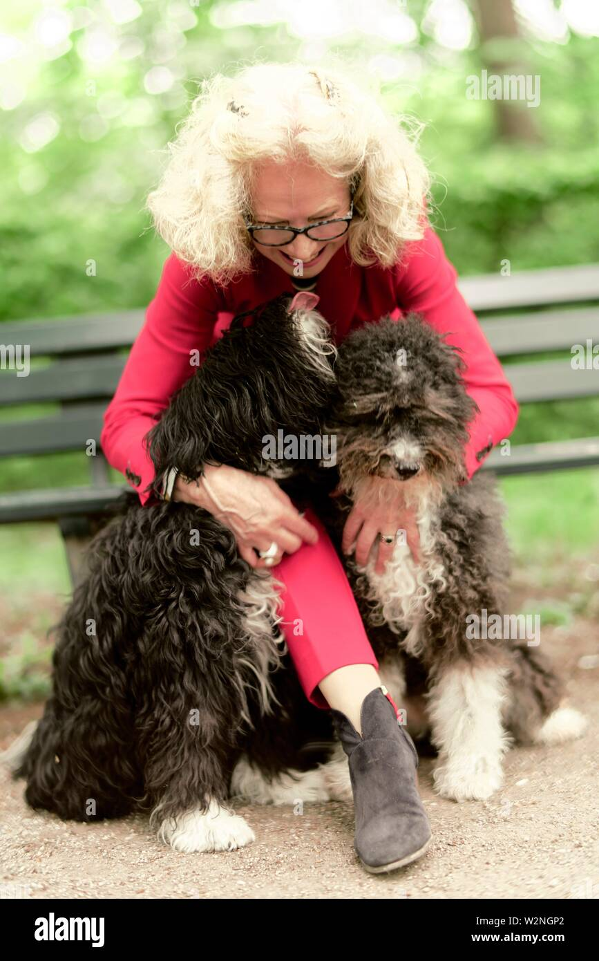 senior woman (67 years old) with dogs in park, in Nymphenburg, Munich, Germany. - Stock Image
