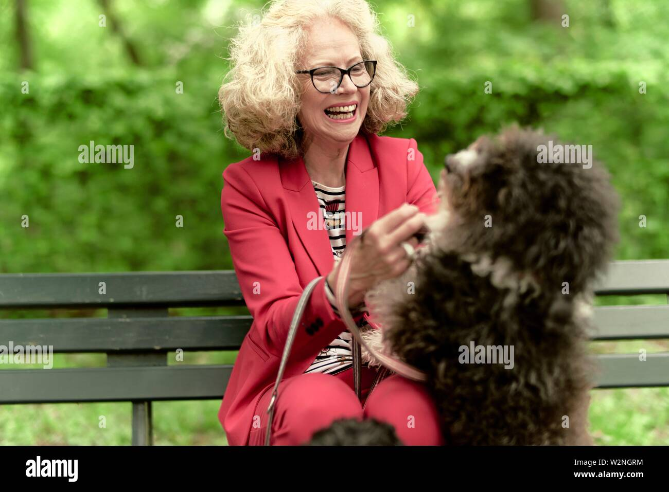 senior woman (67 years old) with dog in park, in Nymphenburg, Munich, Germany. Stock Photo