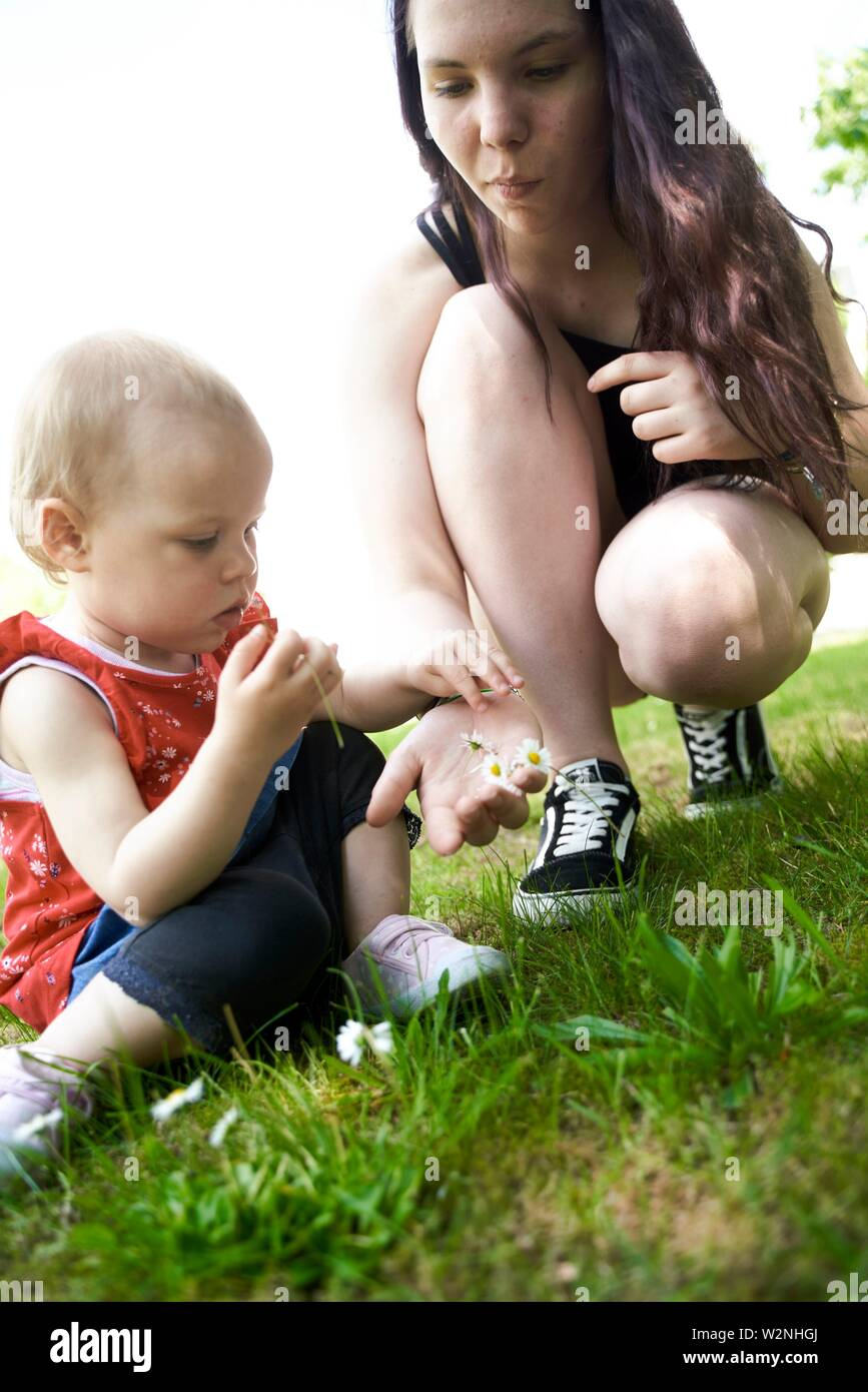 teenage woman showing baby toddler palm of hands filled with daisy flowers, outdoors on meadow in park - Stock Image