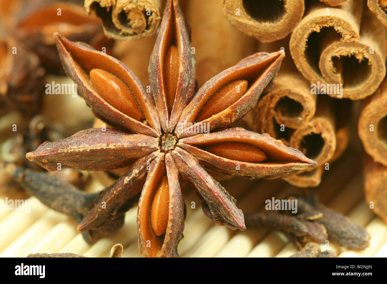 Closeup of Christmas spices - anise star, cloves and cinnamon sticks - Stock Image