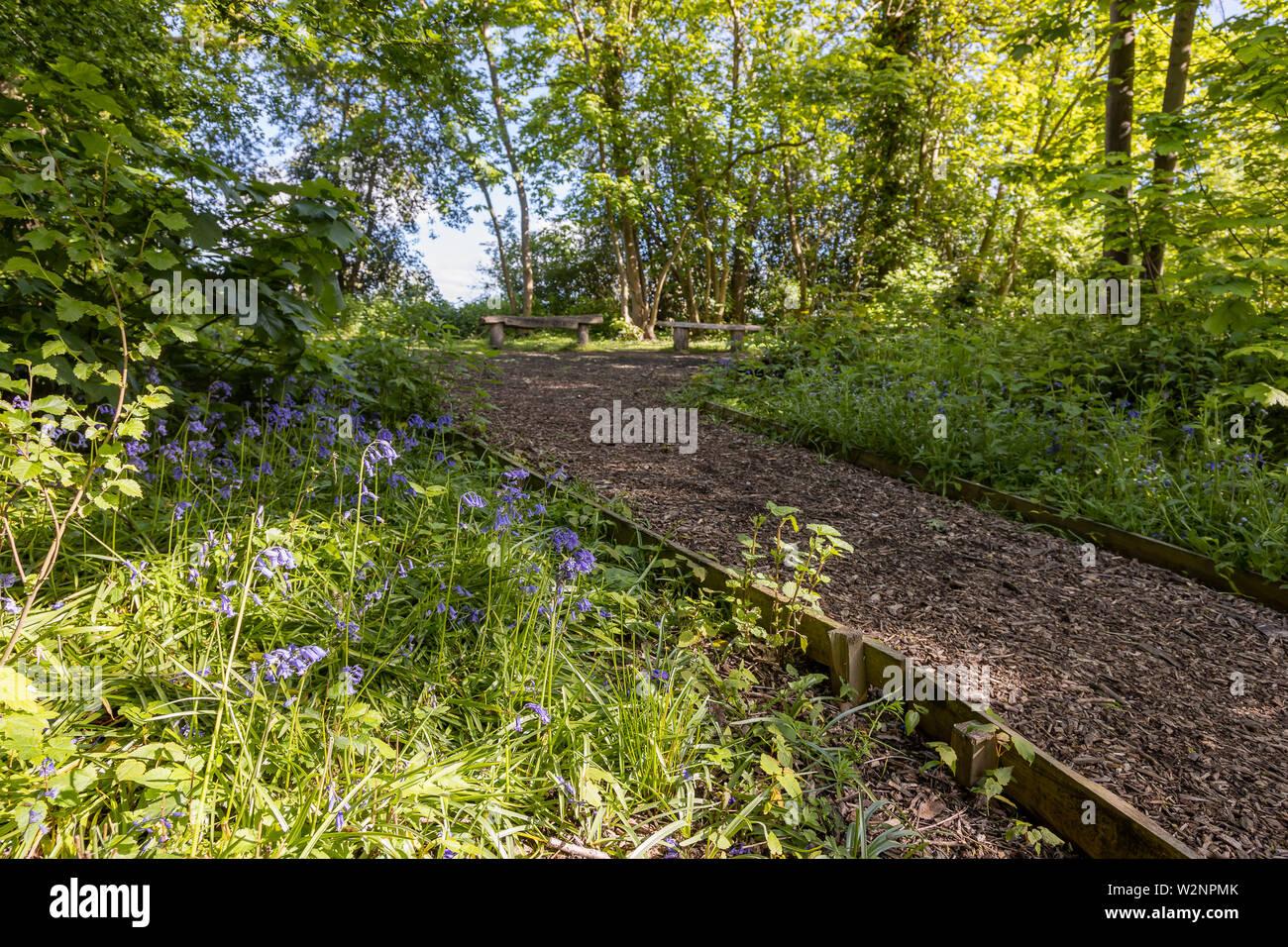 Faversham, Surrey, England, UK, Local Area Photography Stock Photo