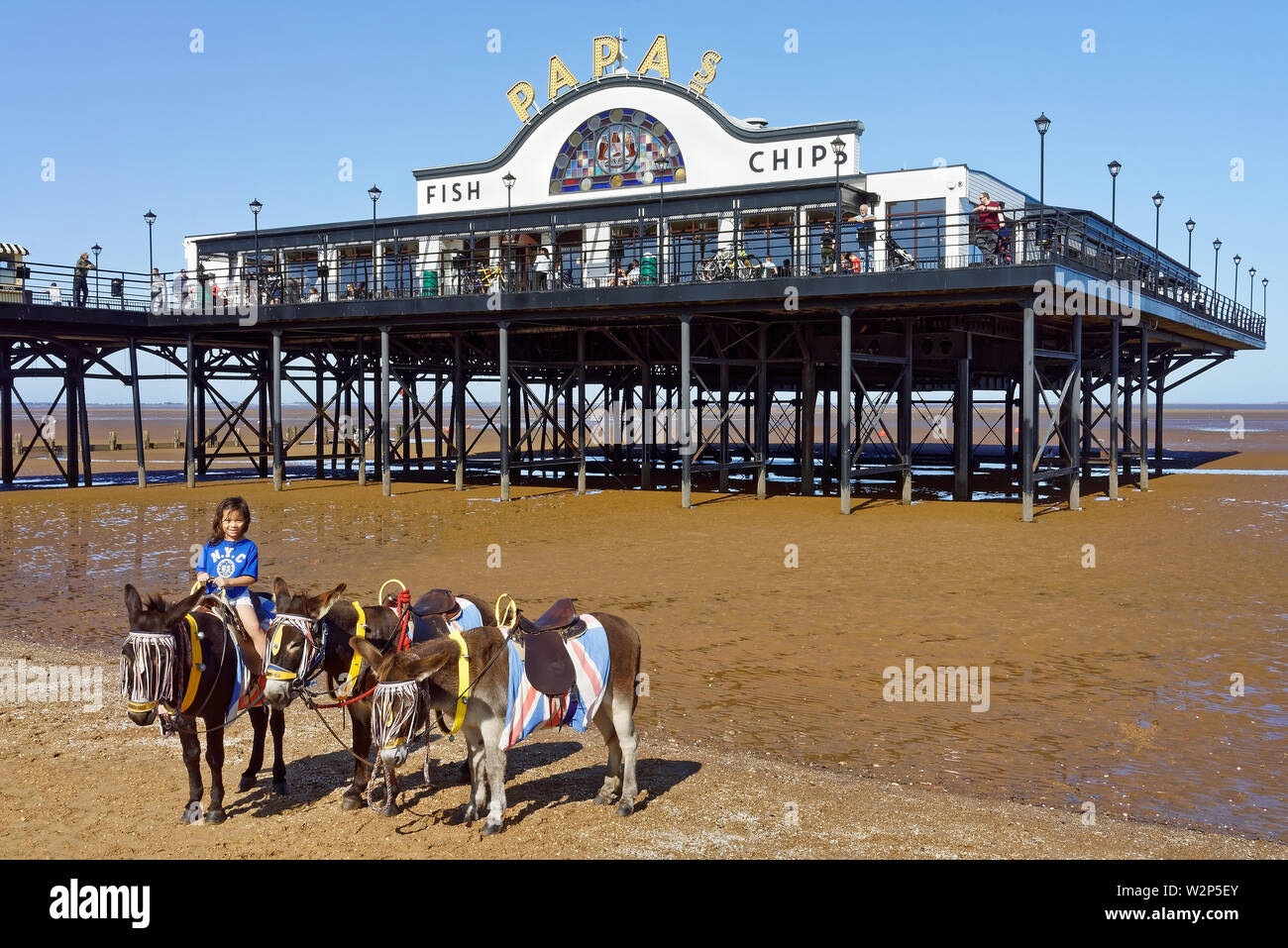 UK,Lincolnshire,Cleethorpes,Pier Beach & Donkeys Stock Photo