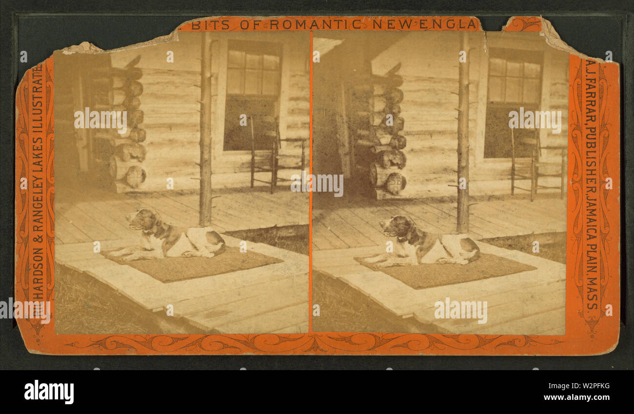 A dog lying outside a log cabin, from Robert N Dennis collection of stereoscopic views - Stock Image