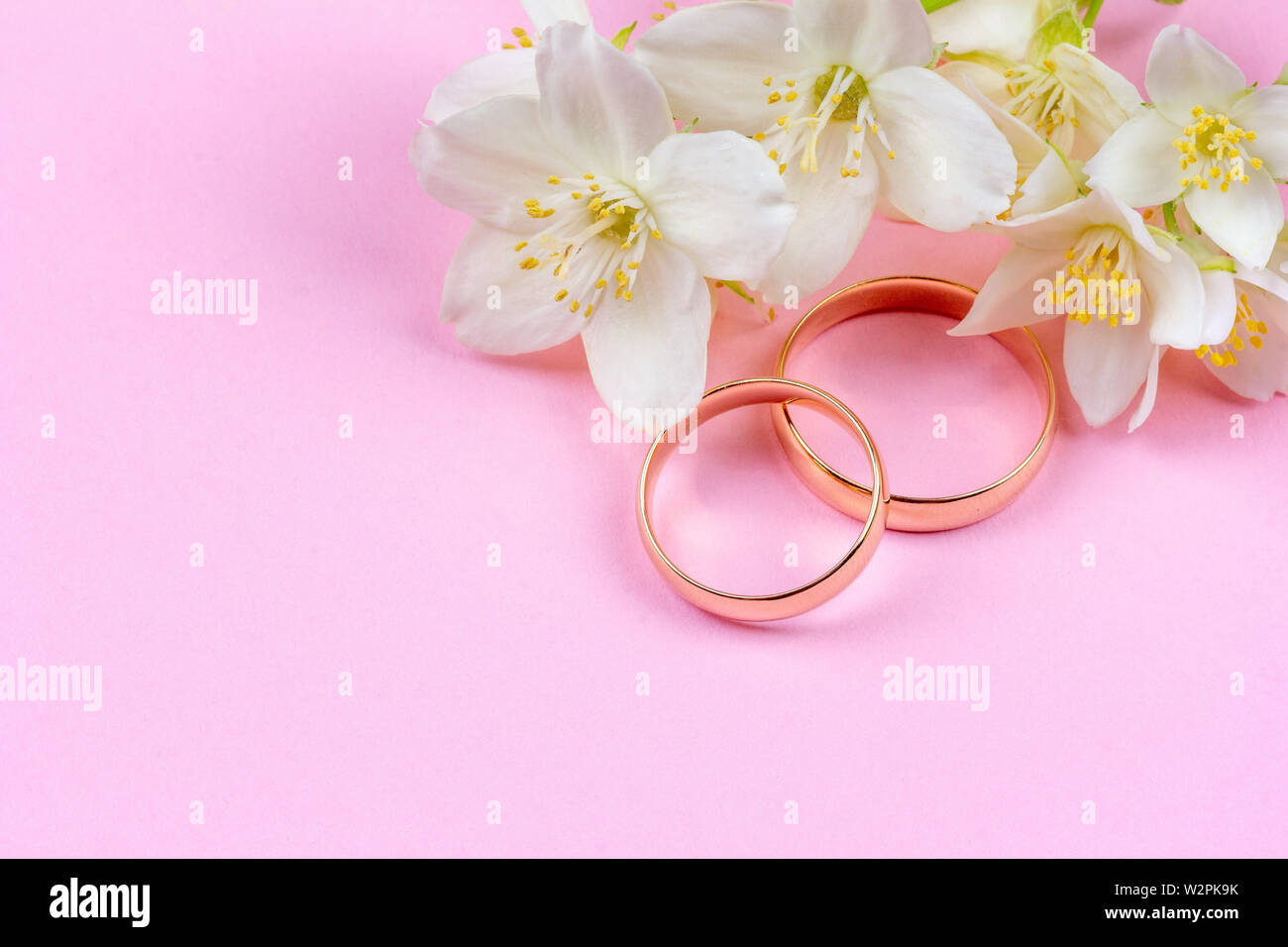 Pair Of Gold Wedding Rings And White Jasmine Flowers On Pink