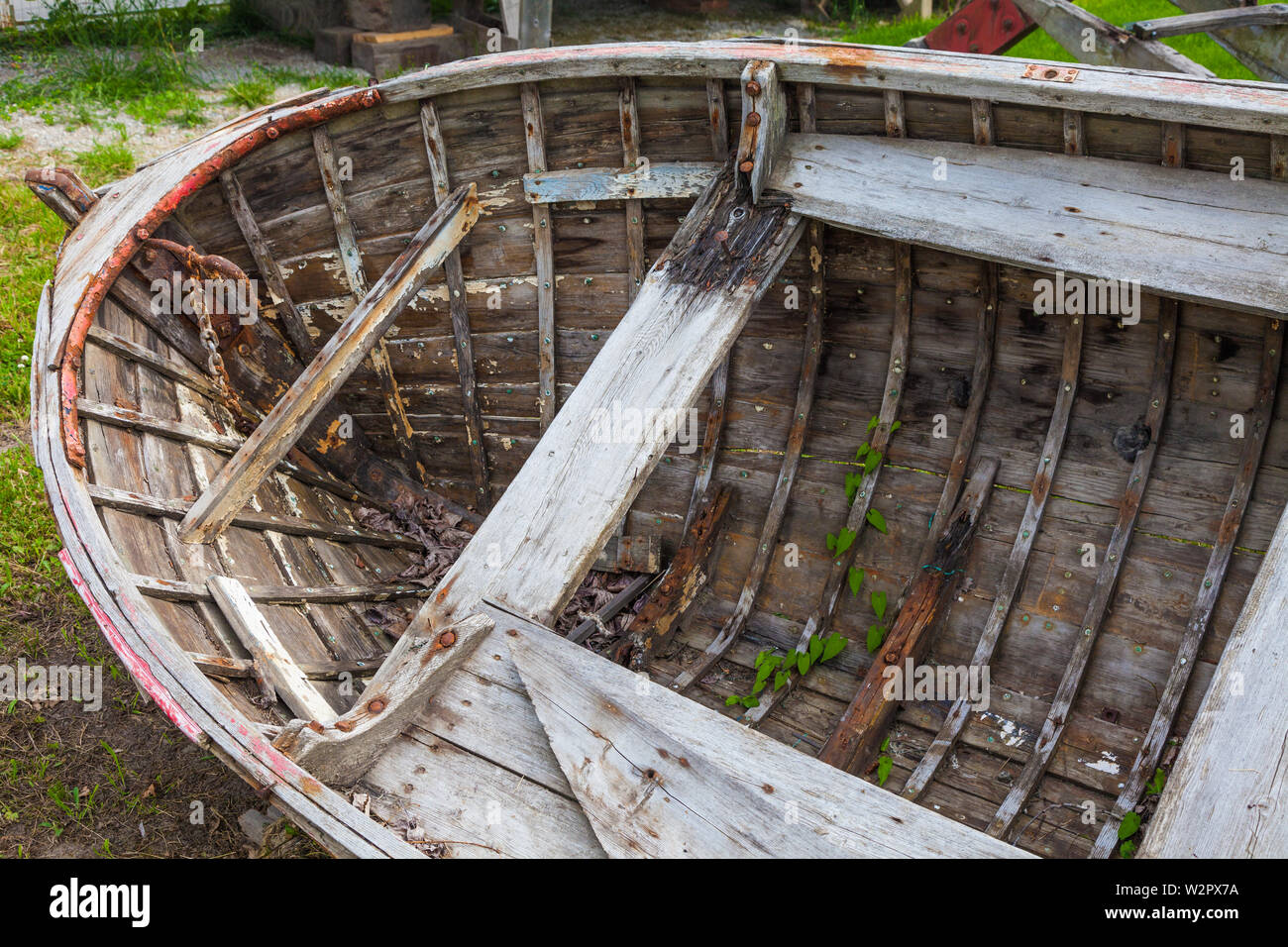 Derelict rowboat with weeds growing though the planking at the heritage Britannia Ship Yard in Steveston British Columbia Canada - Stock Image