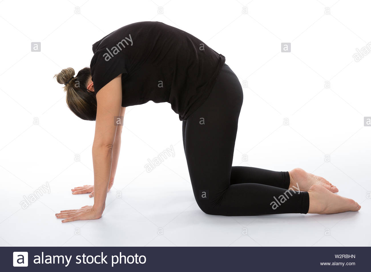 Marjaryasana pose (cat yoga pose) . Yoga poses woman isolated with white background. Yoga pose set. Mindfulness and Spiritually concept. Girl practici Stock Photo