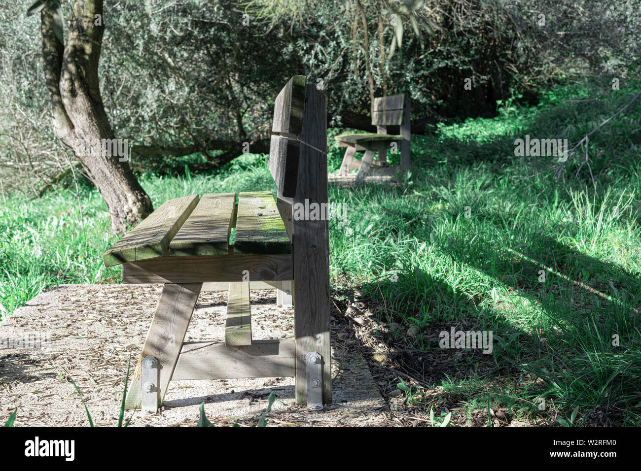 Fine Side View Of Two Antique Rustic Wooden Benches In A Green Spiritservingveterans Wood Chair Design Ideas Spiritservingveteransorg