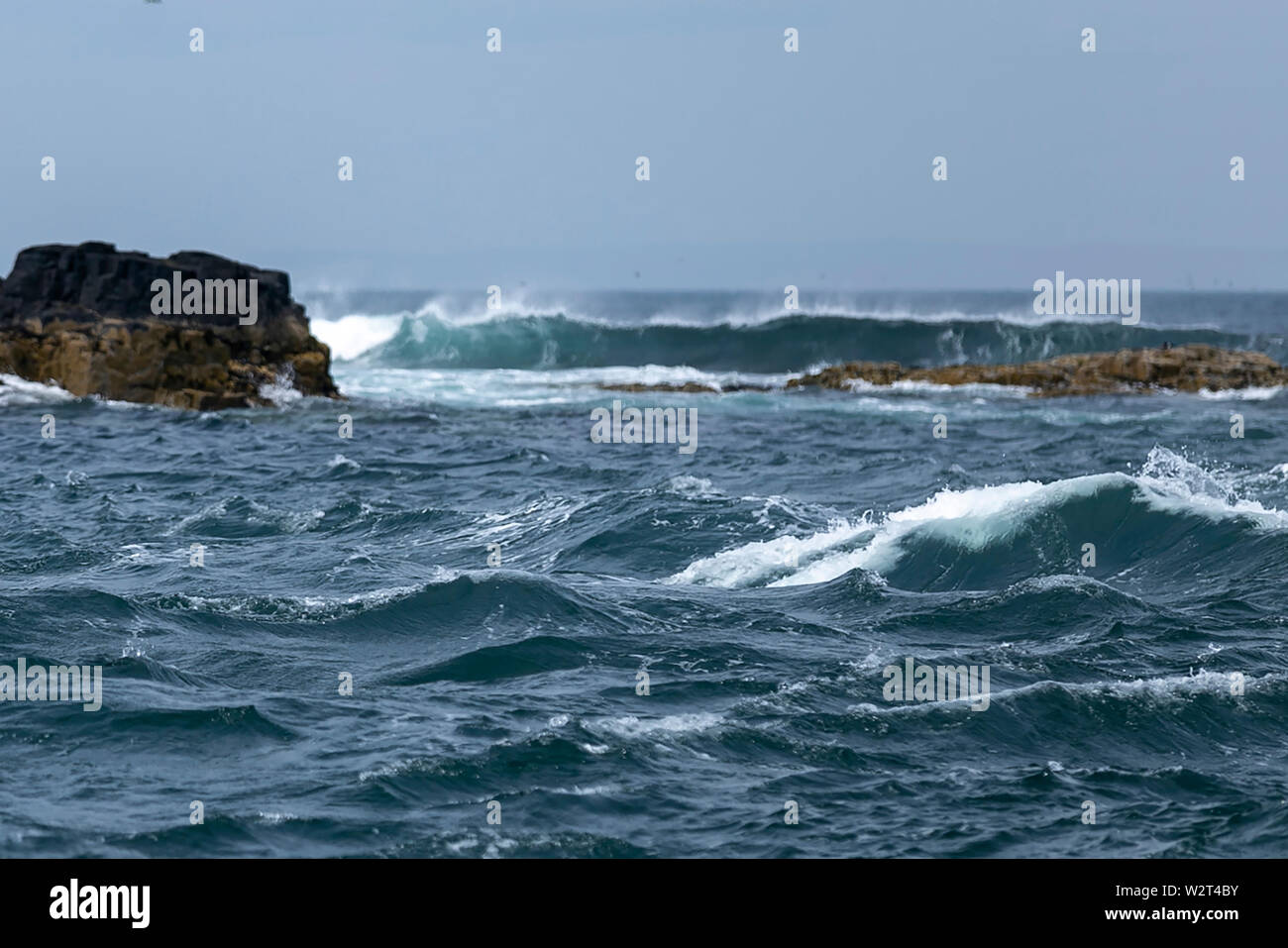 Farne Islands, Northumberland, UK Stock Photo