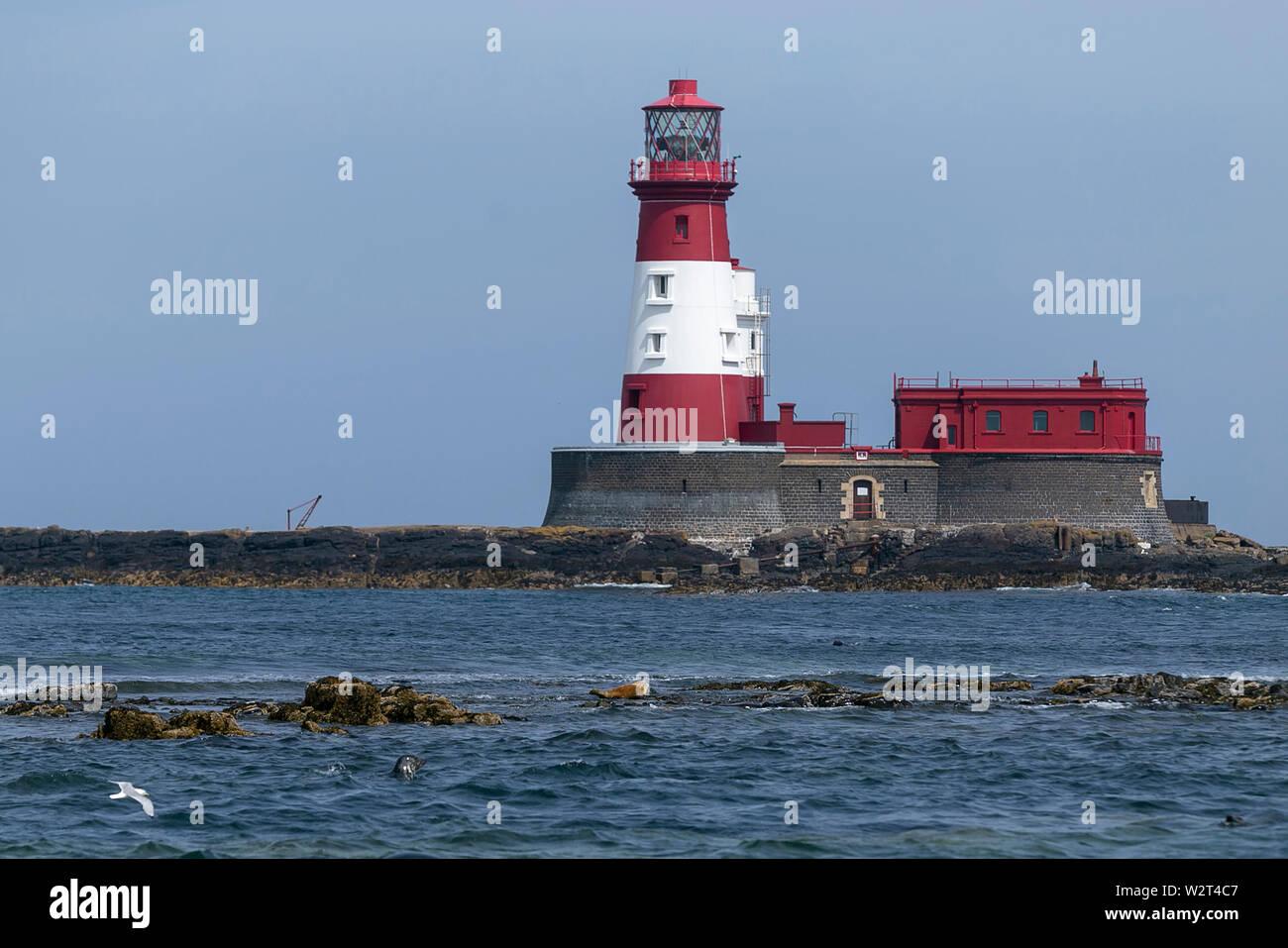 Farne Islands, Northumberland, UK Stock Photo
