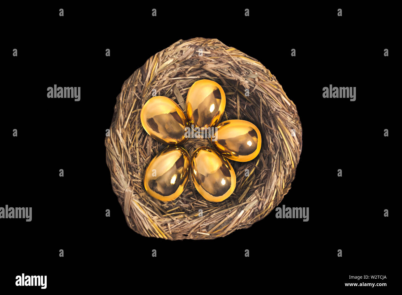 Golden eggs in bird nest isolated on black background - Stock Image