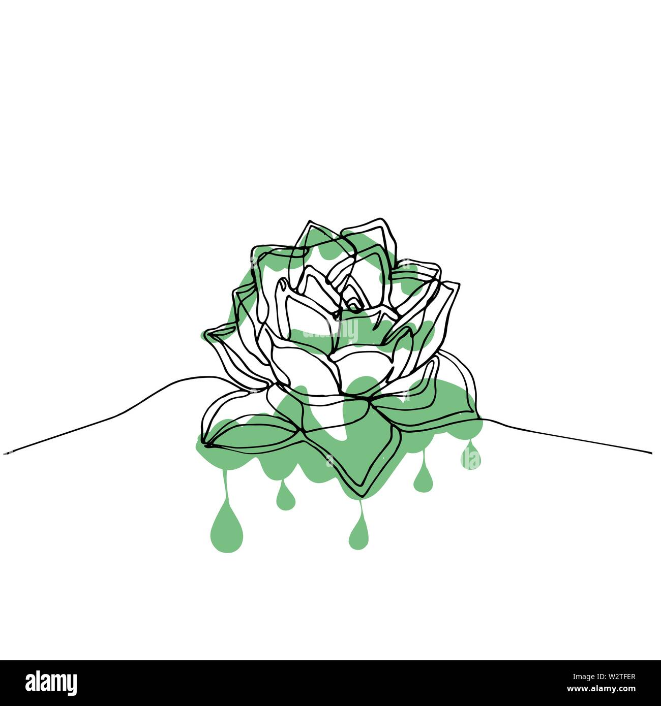 Succulent Line Drawing High Resolution Stock Photography And Images Alamy