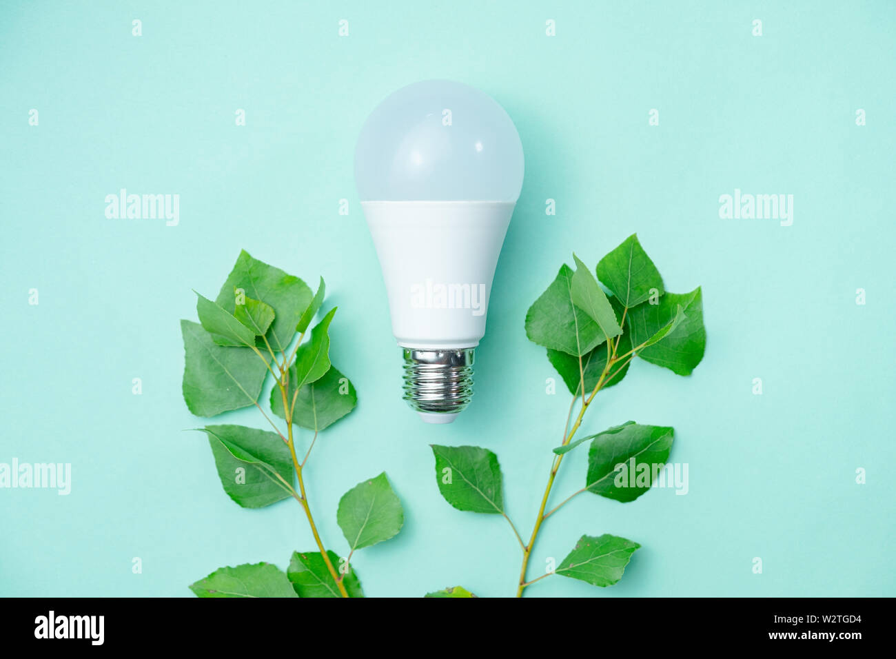 Led lightbulb and green leaves - energy saving concept. Abstract image symbolizing environmental awareness and economical usage of electricity - Stock Image