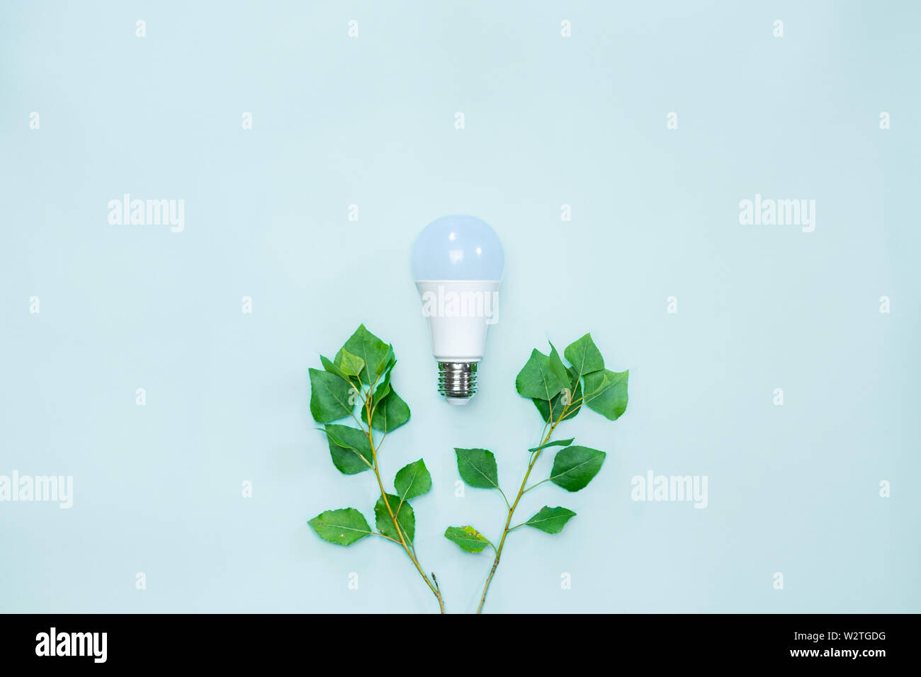 Energy efficience, ecological technologies, green electricity concept. Led lightbulb between brances with tender green leaves symbolizing environmenta - Stock Image