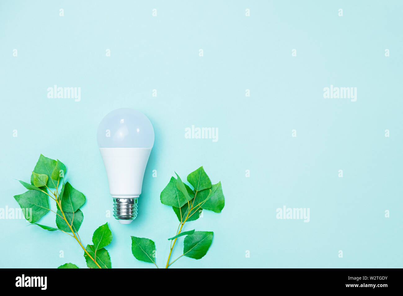 Energy efficience, ecological technologies, green electricity concept. Led lightbulb and  brances with green leaves symbolize environmental awareness - Stock Image