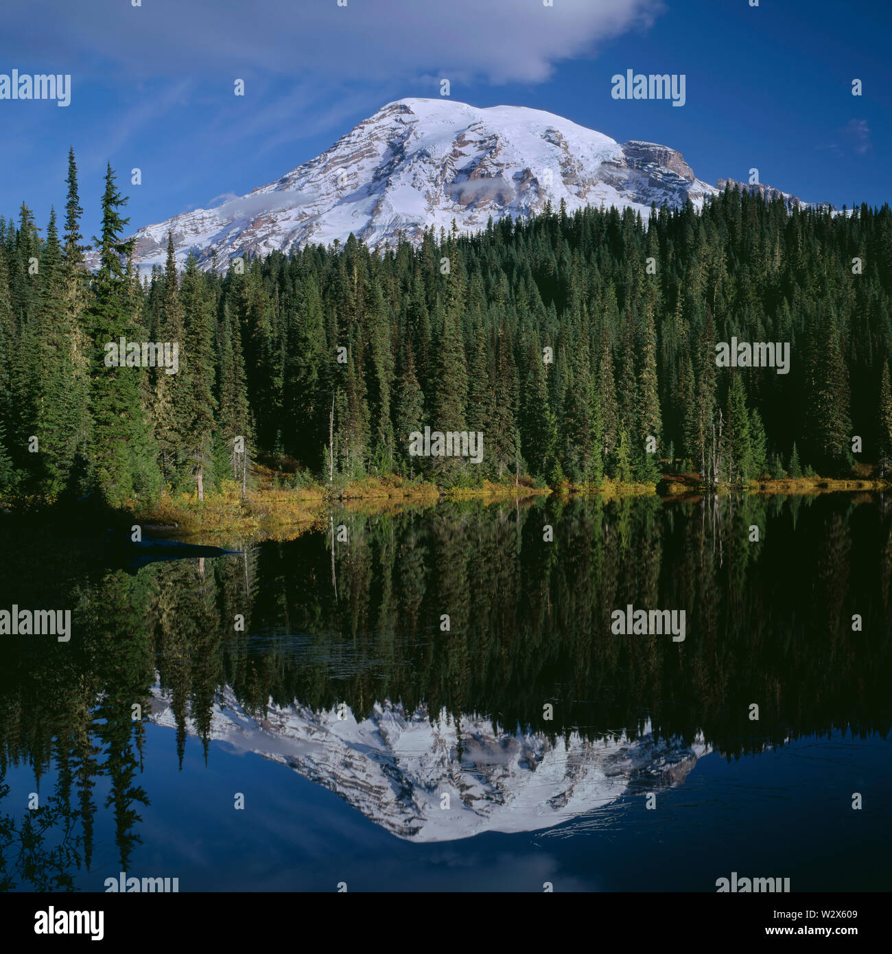 USA, Washington, Mt. Rainier National Park, Mount Rainier and fall colored shrubs are mirrored in Reflection Lake. - Stock Image