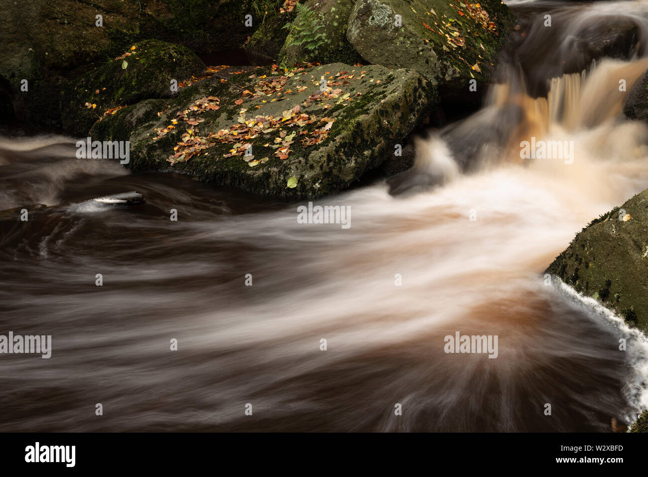 Beautiful close up of stream flowing over rocks in Autumn Fall forest landscape in Peak District in England - Stock Image