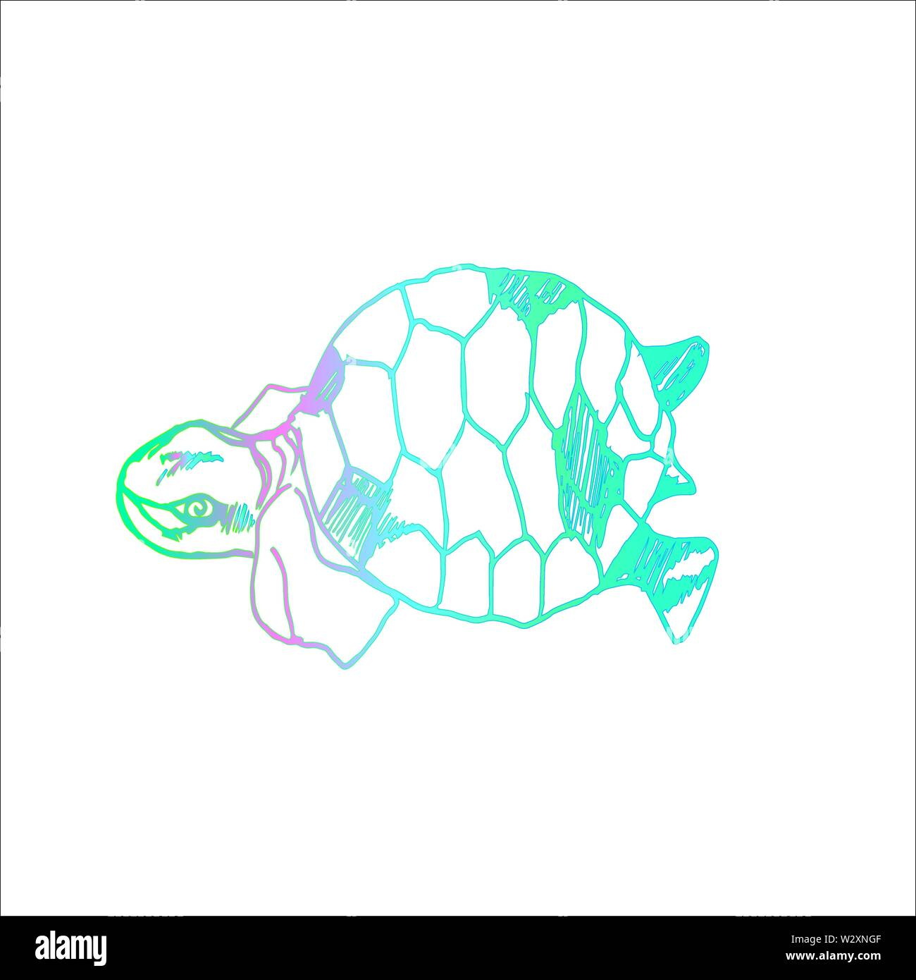 Color illustration of a psychedelic turtle. Tattoo idea. - Stock Image