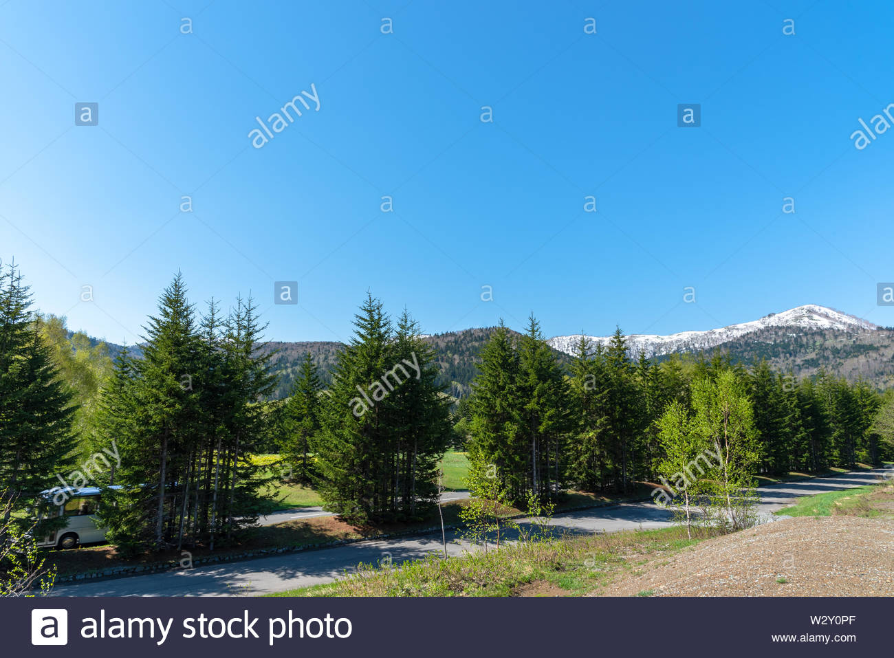 Row of trees on foreground mountains with vast blue sky on background in sunny day in summer time. Nature landscape, beautiful scenic countryside view - Stock Image