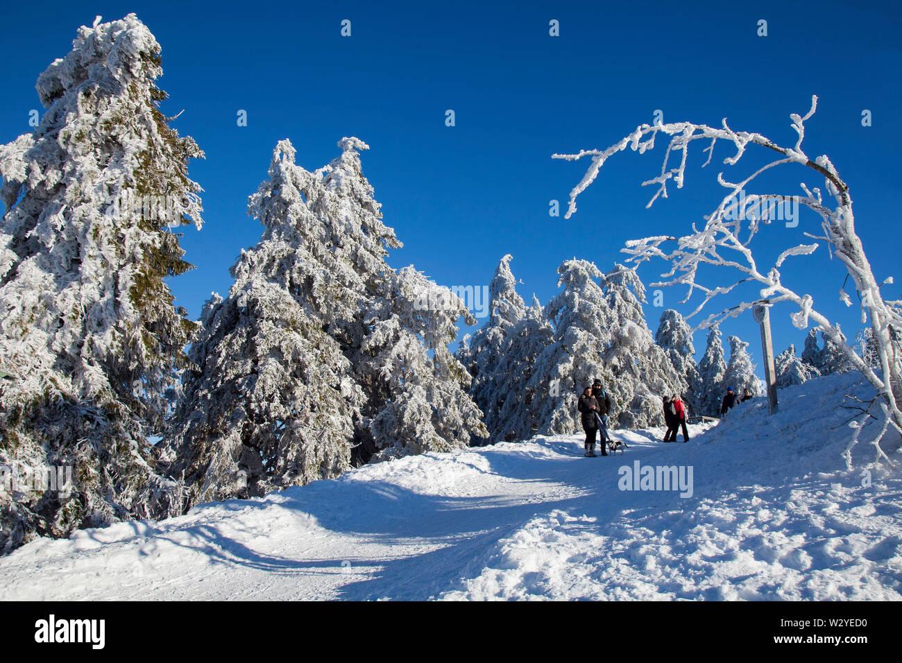 Hiker in winter landscape, summit of Wurmberg mountain, Lower Saxony, Harz National Park, Braunlage, Germany - Stock Image