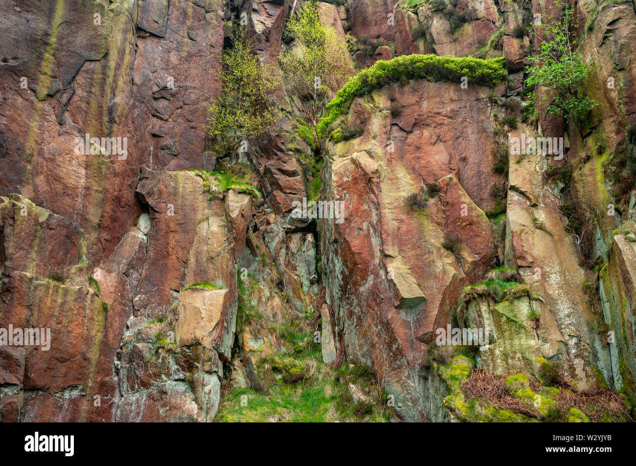 Landscape format view of an overhanging outcrop of rock topped with bilberry bushes at Millstone Edge Quarry near Hathersage. Stock Photo
