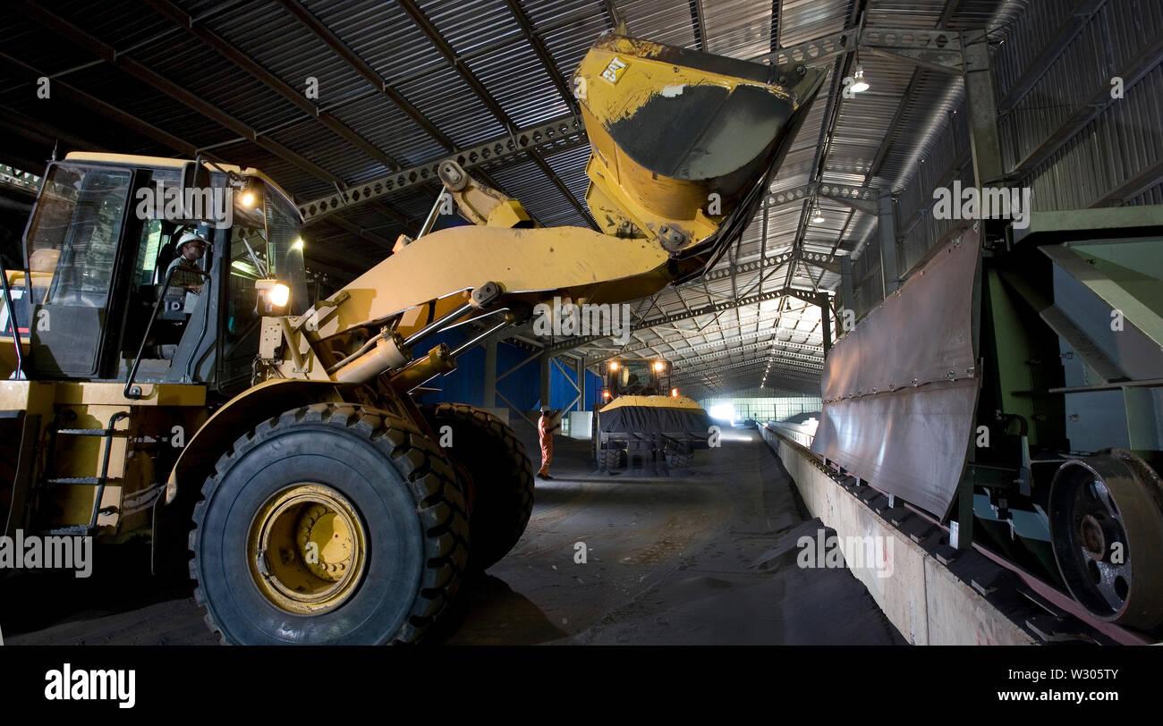 Mining, managing & transporting of titanium mineral sands. Inside ilmenite & rutile storage warehouse. Loading 2.4km overland conveyor to barge jetty Stock Photo