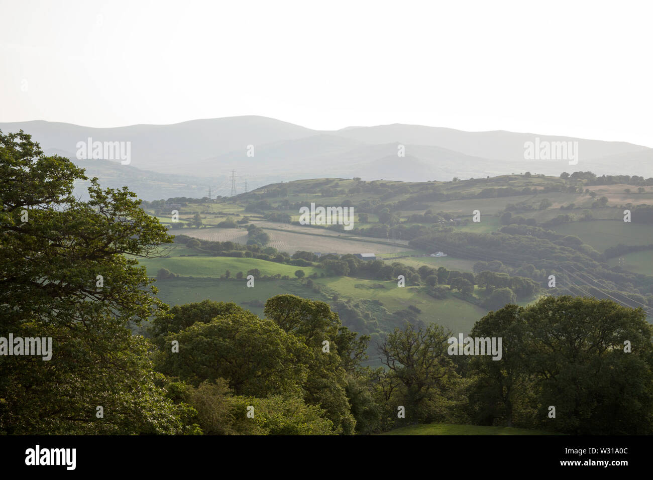 A view along the Vale of Conwy to the mountains of Snowdonia on a summer evening near the village of Eglwysbach Conwy North Wales - Stock Image