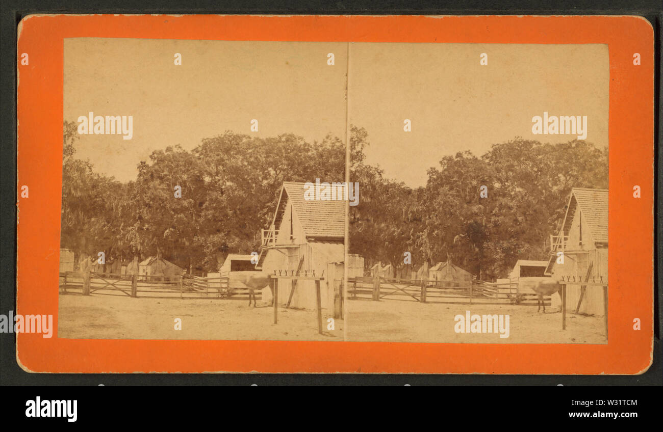 Rice plantation, stables and Negro huts, by Ryan, D J, 1837- - Stock Image