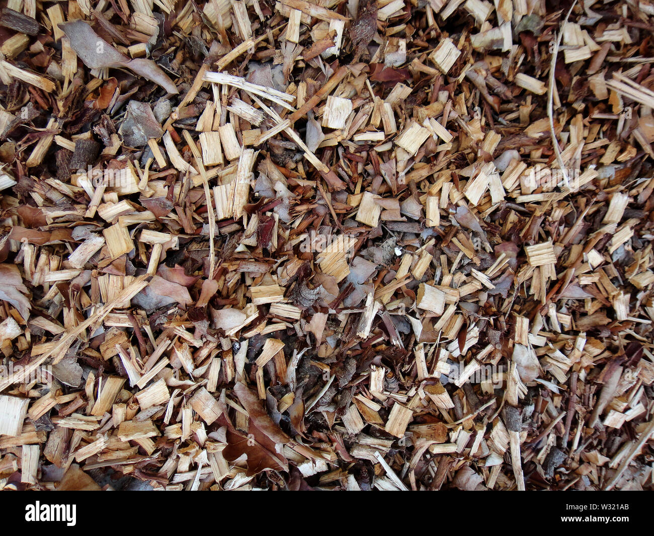 Woods small pieces macro background fine art in high quality prints - Stock Image