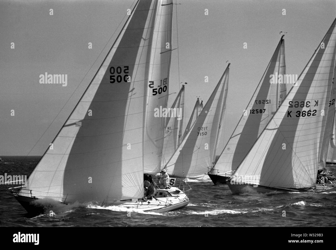 AJAXNETPHOTO. JULY, 1974. TORBAY, ENGLAND. - ONE TON CUP WORLDS - FLEET STARTS 1ST RACE.PHOTO:JONATHAN EASTLAND/AJAX REF:7420719A - Stock Image